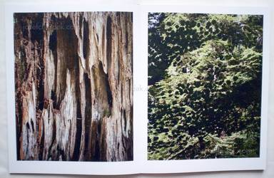 Sample page 6 for book  Vincent Buller – I arrived at Cape Disappointment