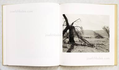 Sample page 6 for book  Robert Adams – Tree Line