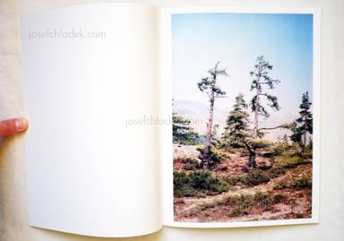 Sample page 1 for book  Vincent Delbrouck – Some Windy Trees