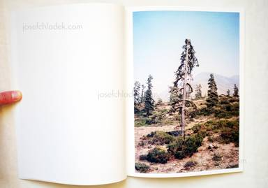 Sample page 2 for book  Vincent Delbrouck – Some Windy Trees