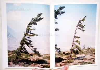 Sample page 4 for book  Vincent Delbrouck – Some Windy Trees