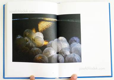 Sample page 9 for book  Nat Urazmetova – The Persimmon's Fruit