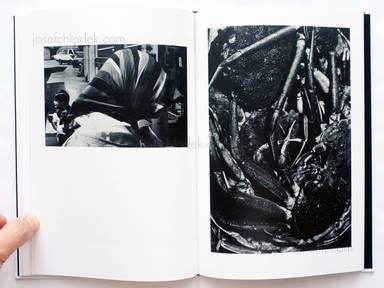 Sample page 11 for book  Hiroyasu Nakai – North Point (中居裕恭写真集 北点)
