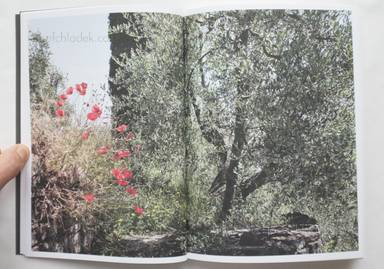 Sample page 3 for book  Martino Marangoni – Nonni's Paradiso - An Olive Tree Story