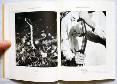 Sample page 4 for book  Joan / Formiguera Fontcuberta – Dr. Ameisenhaufens Fauna